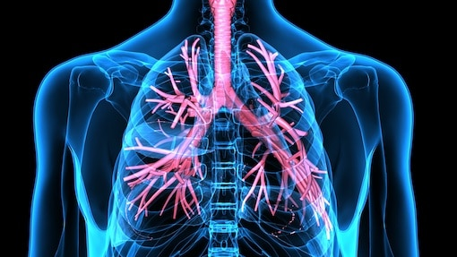 asthma-is-a-disease-of-the-breathing-tubes